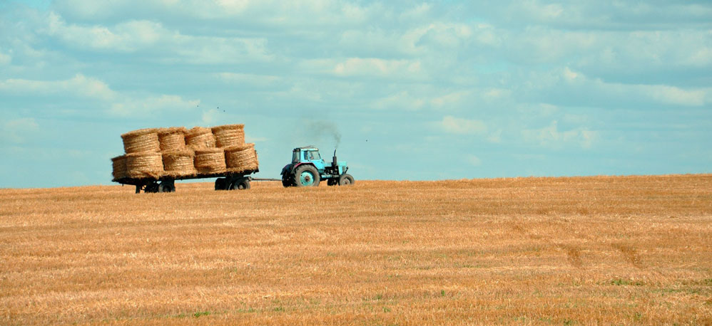 How Does the 2017 Tax Act Affect the Agriculture Industry?